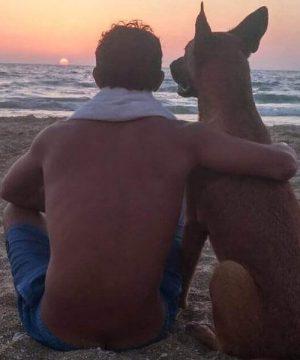 Poli-the-surfing-dog